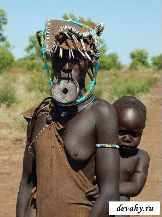 Голые племенные самки для самцов
