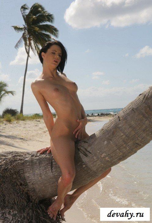 Голая красотка на дереве