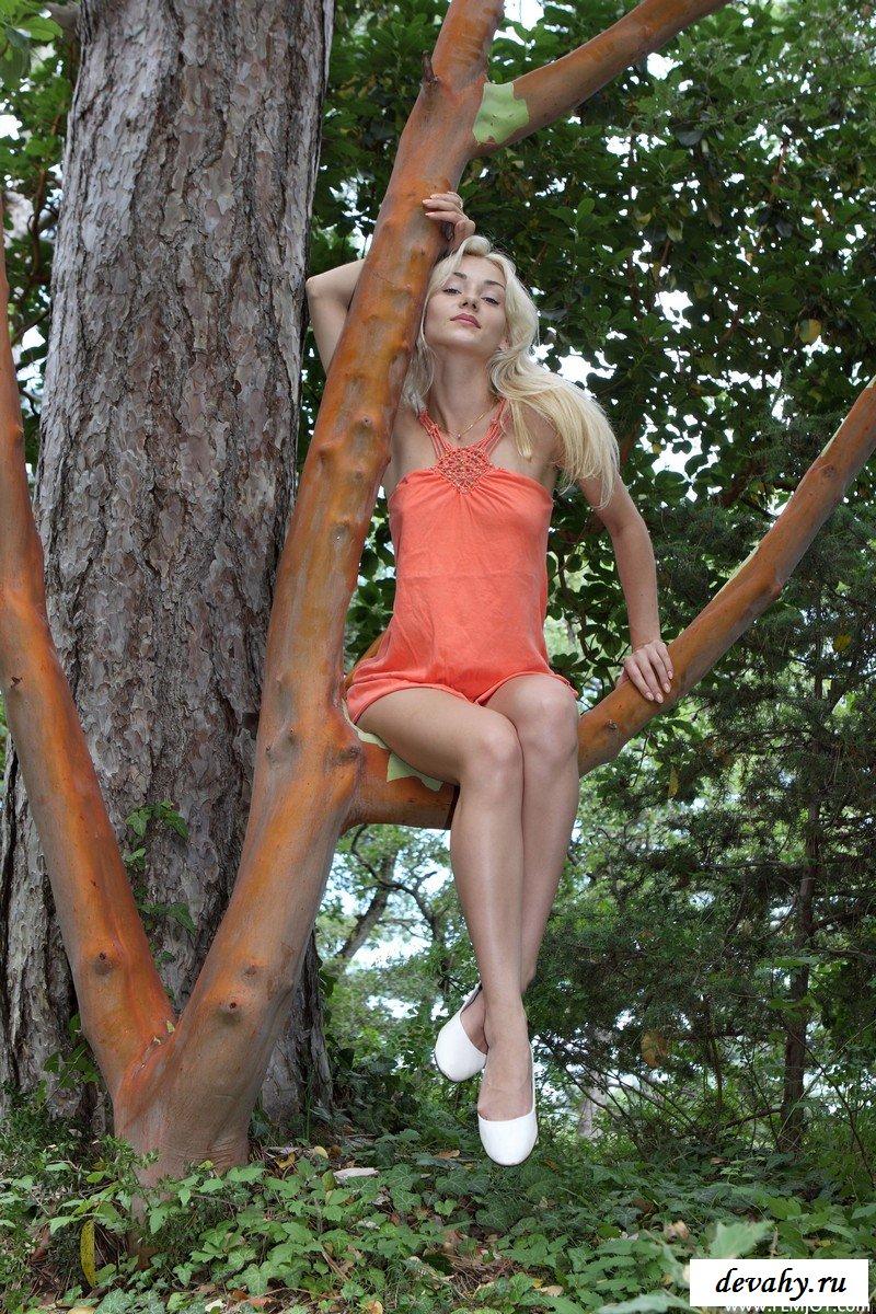 Загадочная девушка на дереве.