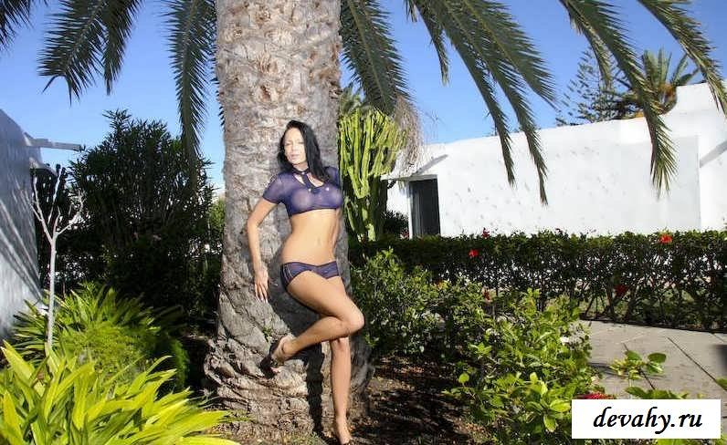 Раздетая блядь под пальмой
