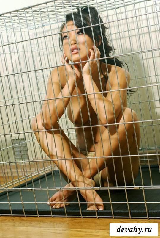 Дикая соблазнительная кошка в клетке секс фото