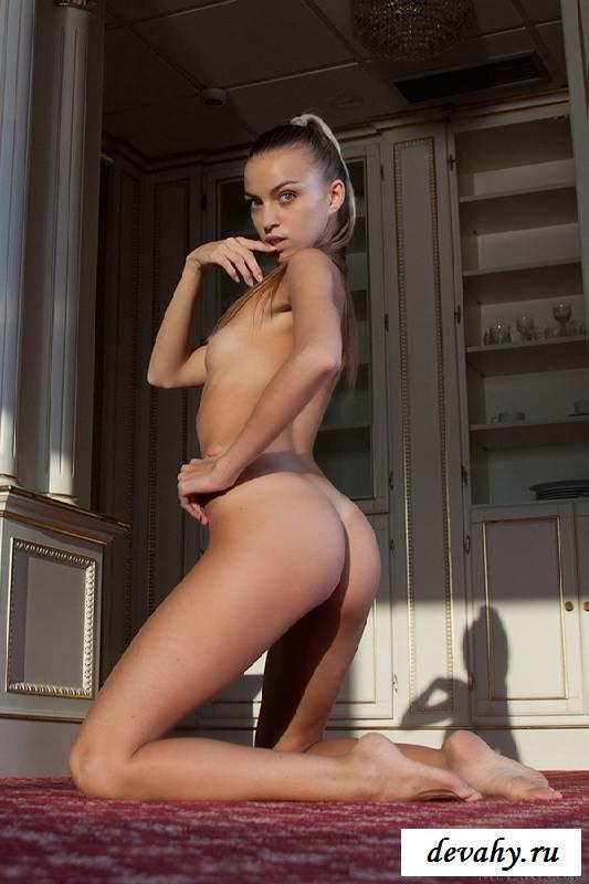 Обнаженная чикса с фигуристым телом  (15 фото эротики)