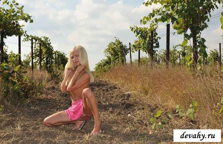 Стриженная писька голой блондинки на винограднике  (Пятнадцать эро фото)