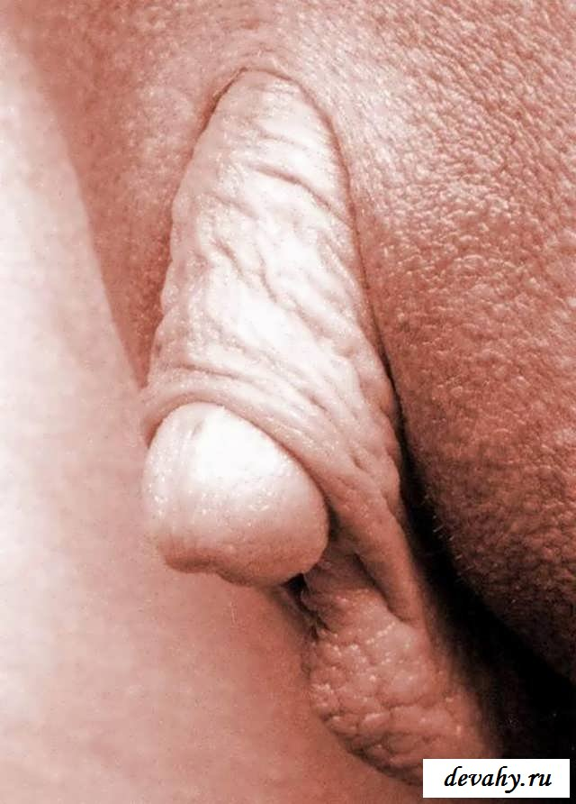 foto-genitalii-huy-komplekt-trusiki-byustgalter-chulki